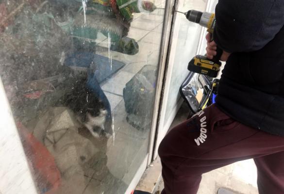Ελευθερία σε φυλακισμένα ζώα με την επέμβαση της Αστυνομίας