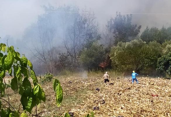 Fire in Kritika, Lefkimmi - Order given to evacuate villages in danger